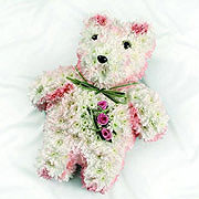 A floral teddy, with three pinks roses on the teddy's chest