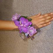 A wrist corsage of purple Vanda Orchids